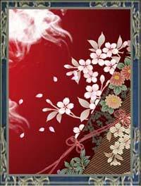 景紅先生(ケイコ先生)のプロフィール写真