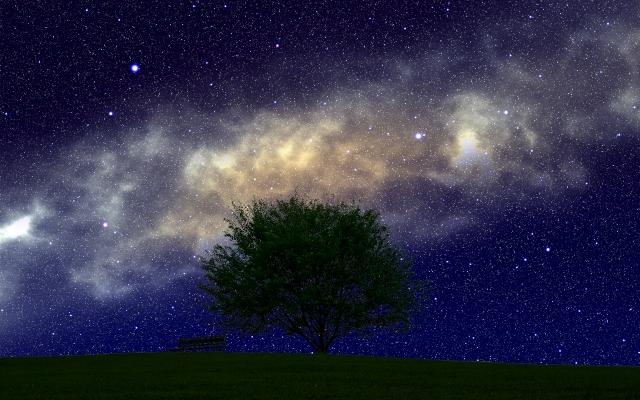 夜空を彩る星々