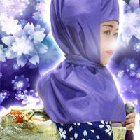 ピュアリの紫姫先生のプロフィール写真